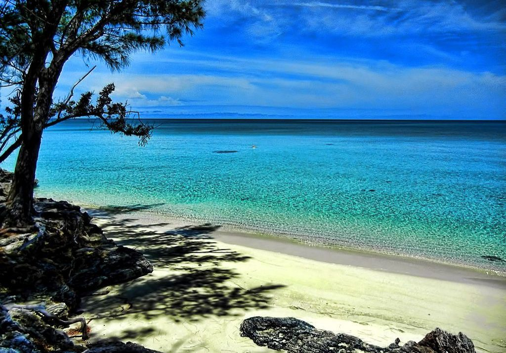 Beach scene, Current, Eleuthera. Photo credit: Trish Hartmann/Wikimedia Commons