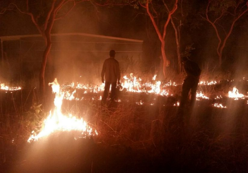 Cultural burn at an old hunting camp in Arnhem Land, Northern Territory. (Photo copyright 2018 by Mark A. Bonta, 2018.)