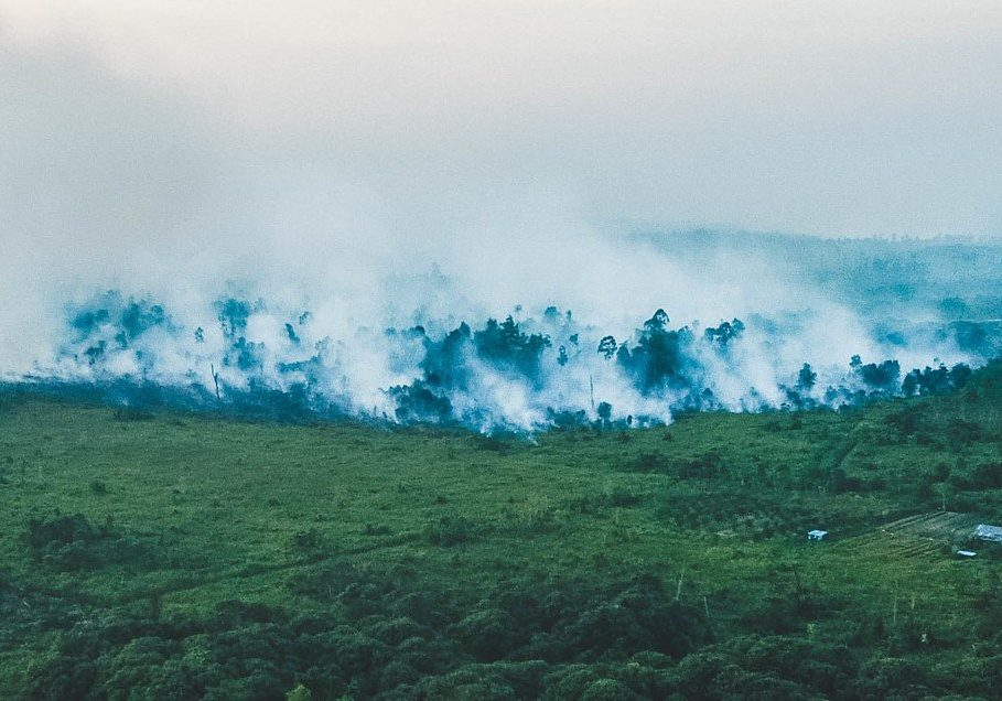 Rainforest fires in 2019 near Sintang City, West Kalimantan, Borneo, Indonesia. Photo credit: Yobby Rony/Sintang Police Drone, Sintang Police Public Relations